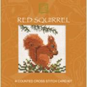 CMSQ Red Squirrel Miniature Card