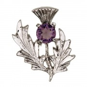 027 Scottish Thistle Brooch