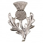 046 Scottish Thistle Brooch