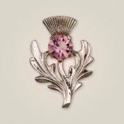 025 Scottish Thistle Brooch