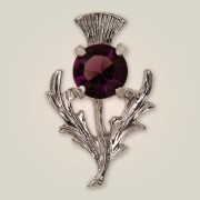 081 Scottish Thistle Brooch